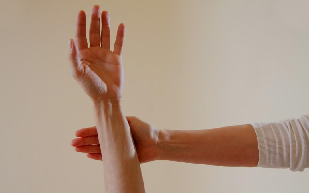 Santé par le Toucher ( Touch for Health )