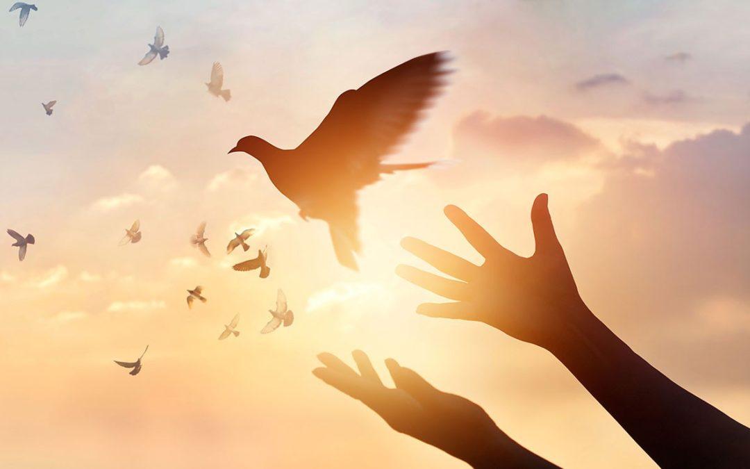 Masterclass Gratuite  #Faire la paix avec son passé